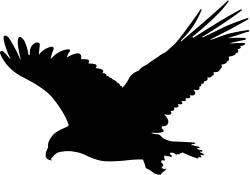 bird of prey sil 2